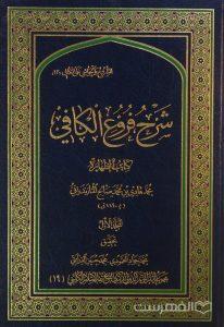 شرح فروغ الکافي, تحقیق: محمد جواد المحمودی، محمد حسین الدرایتي, 5 جلدی, (HZ2574)
