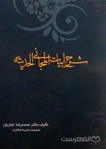 شرح ابیات المجانی الحدیثه, تألیف دکتر محمدرضا نجاریان (عضو هیأت علمی دانشگاه یزد), (MZ2601)